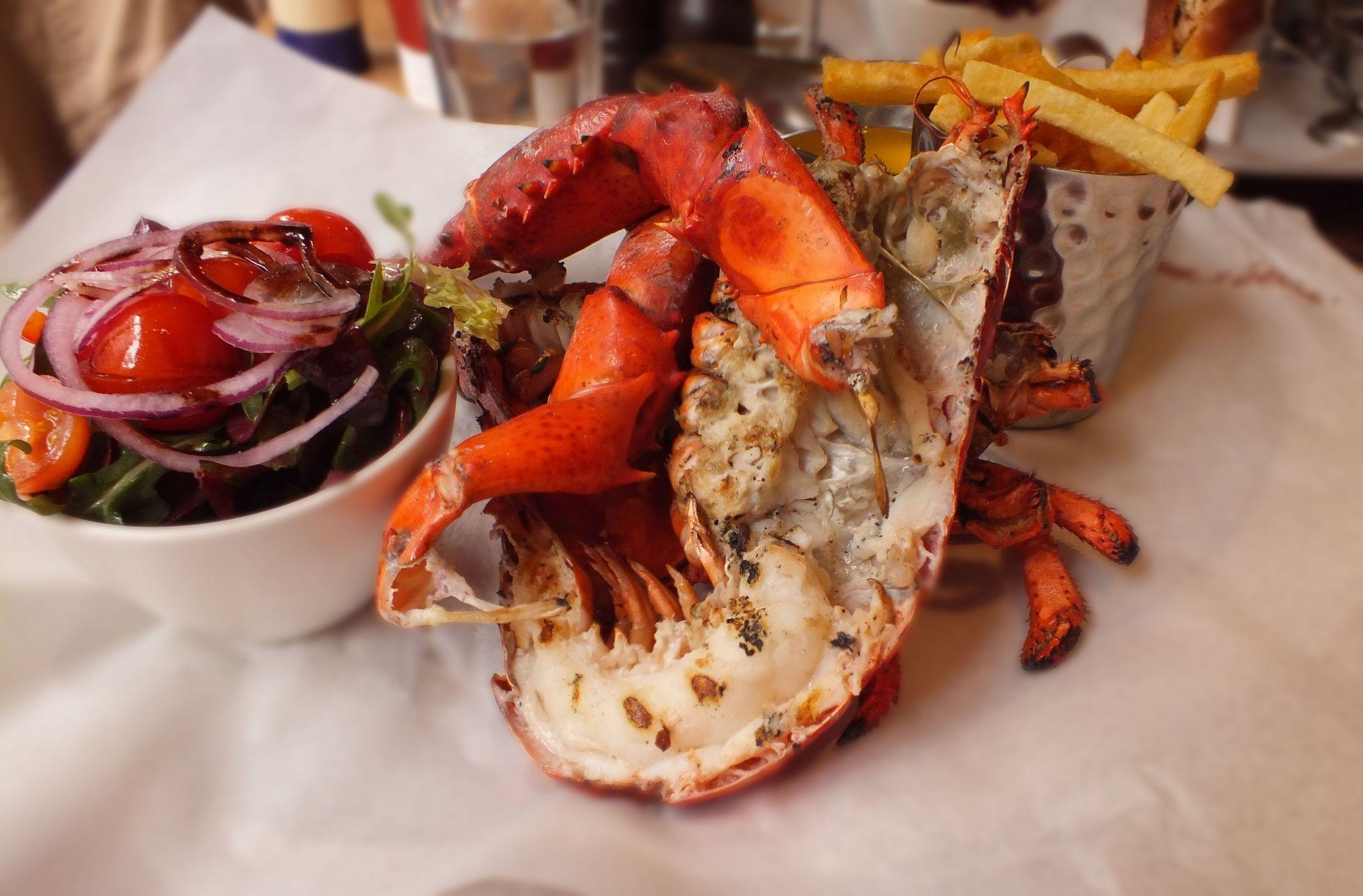 fancy lobster meal