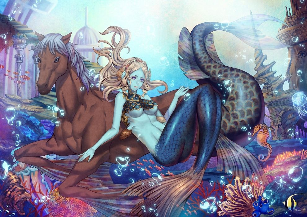 being under water Bubbles City corals Fish mermaid sea horse tail the horse wallpaper