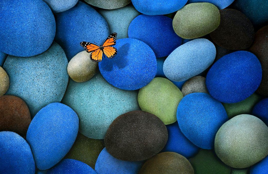 blue brown butterfly stones wallpaper