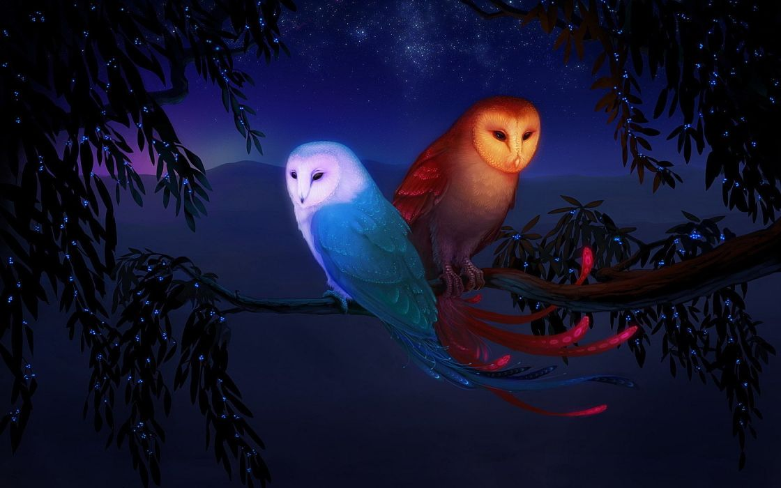 water elements tree branch mountains fire birds fantasy stars owls wallpaper
