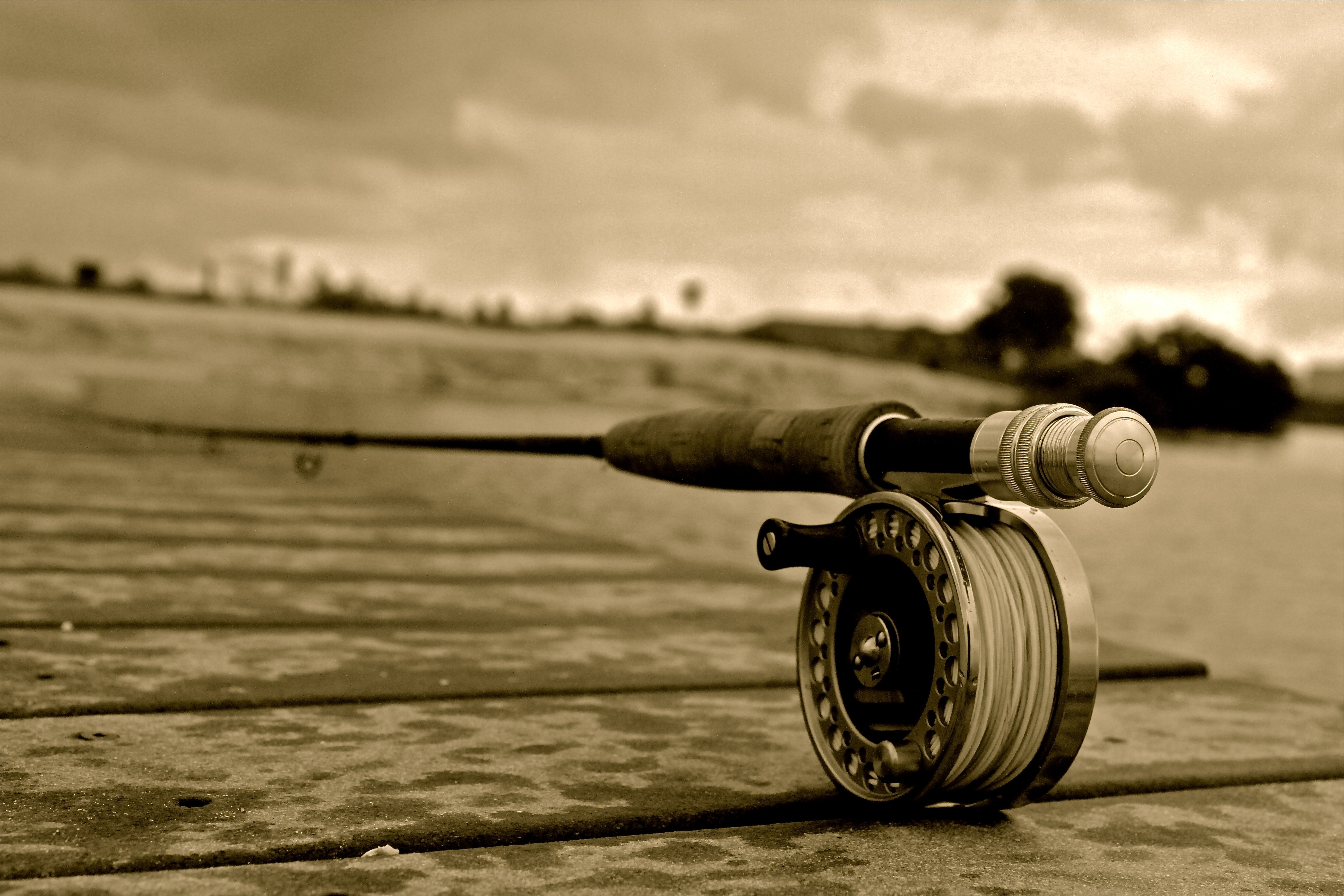 trout fly fishing wallpaper - photo #35