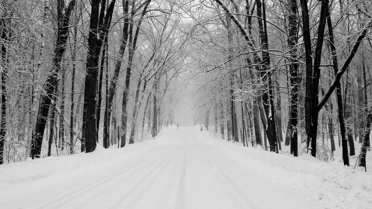 snow winter road forest wayfarer umbrella Indices wallpaper