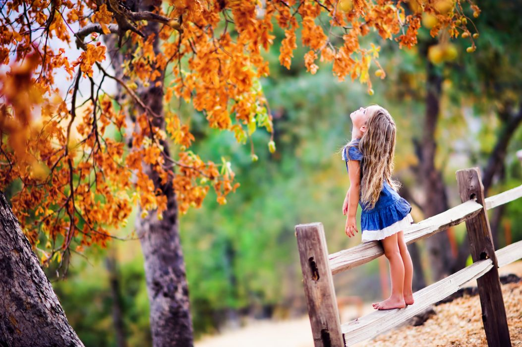 trees girl fence foliage baby wallpaper