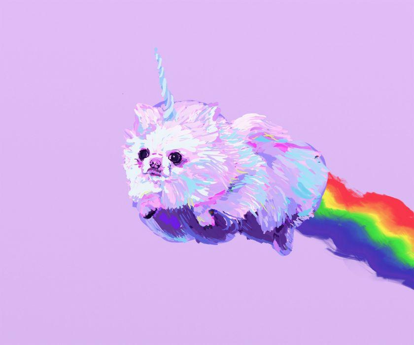 POMERANIAN dog dogs fantasy unicorn wallpaper