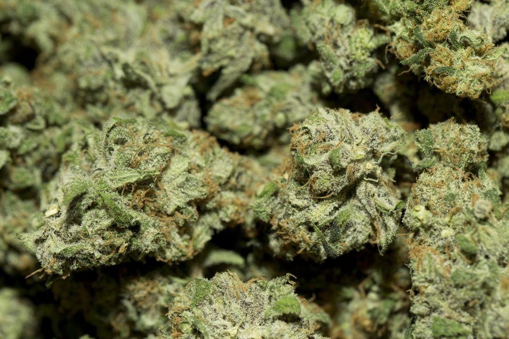 Marijuana 420 weed mary jane drugs wallpaper