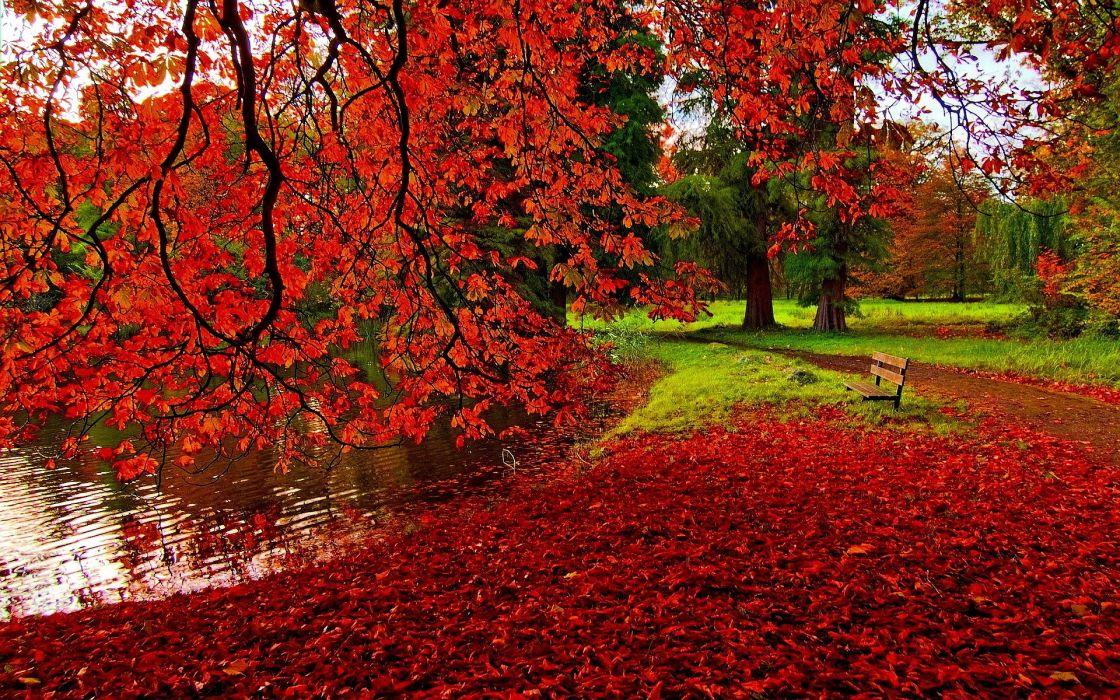 autumn fall foliages leaves lake wallpaper