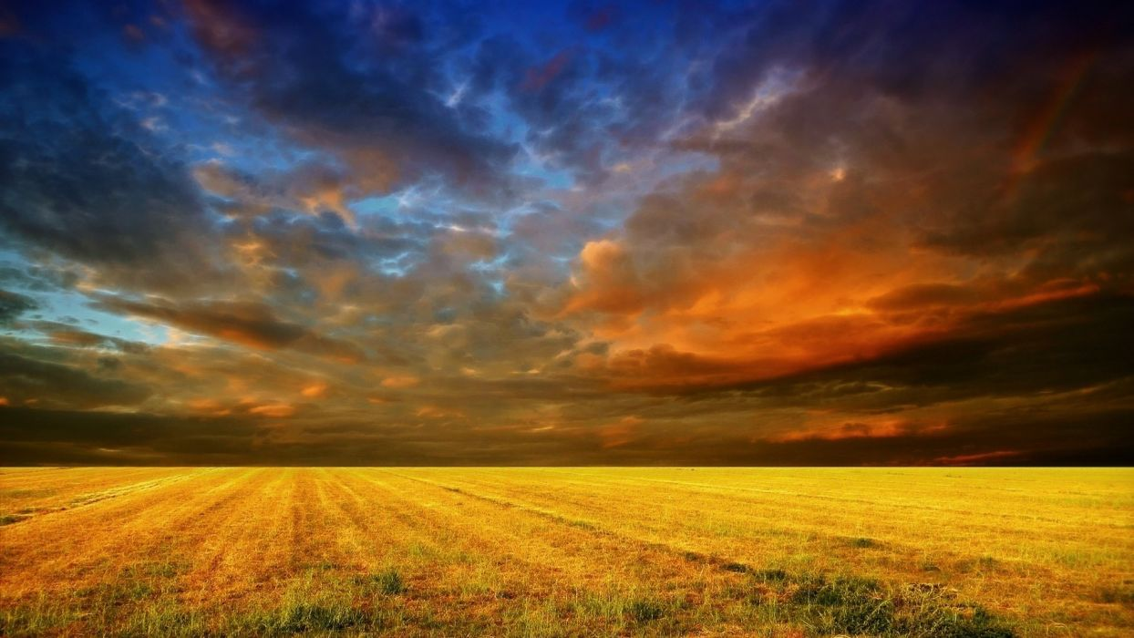 colorful sky field yellow wallpaper