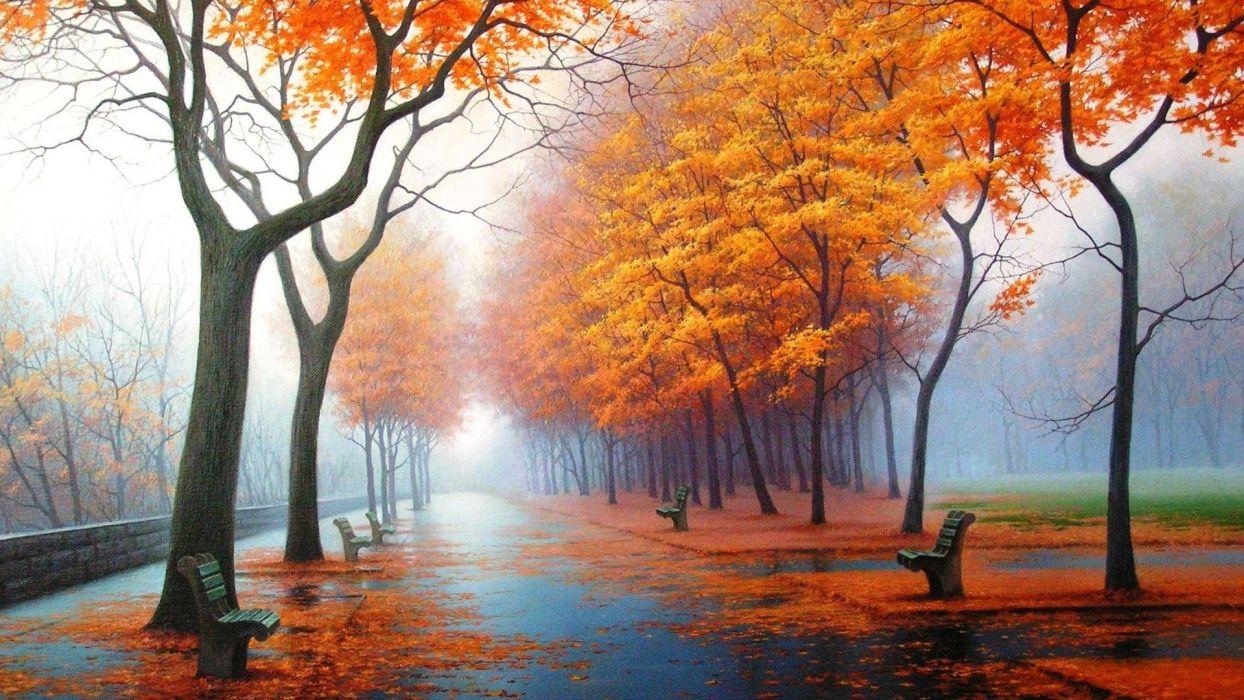 autumn fog drizzle rain foliage leaves trees park wallpaper