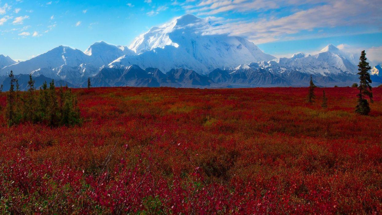 Denali National Park Alaska wallpaper