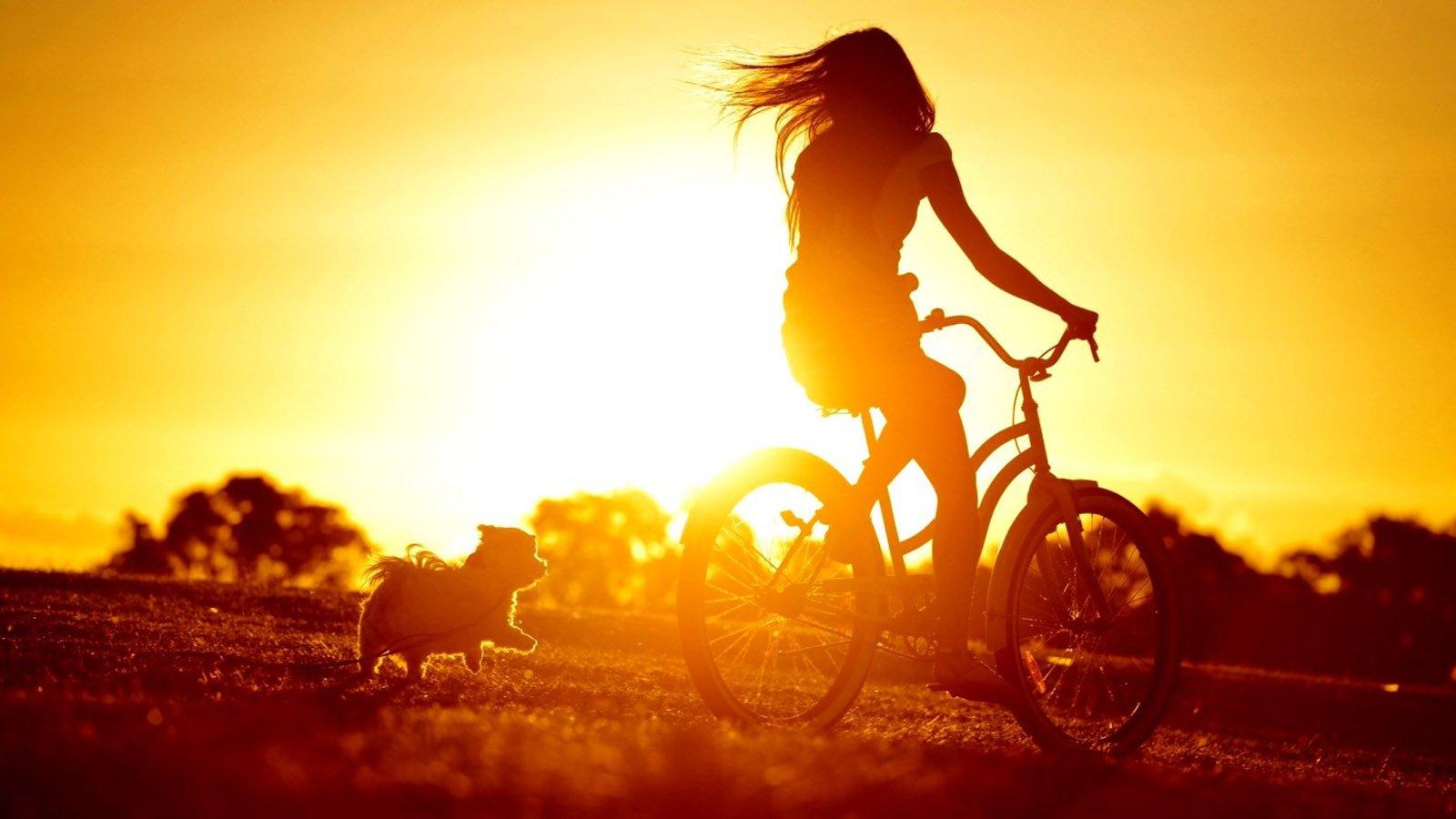 Mood sun sunlight bicycle dog cute girl wallpaper 1600x900 527040 wallpaperup - Happy mood wallpaper ...