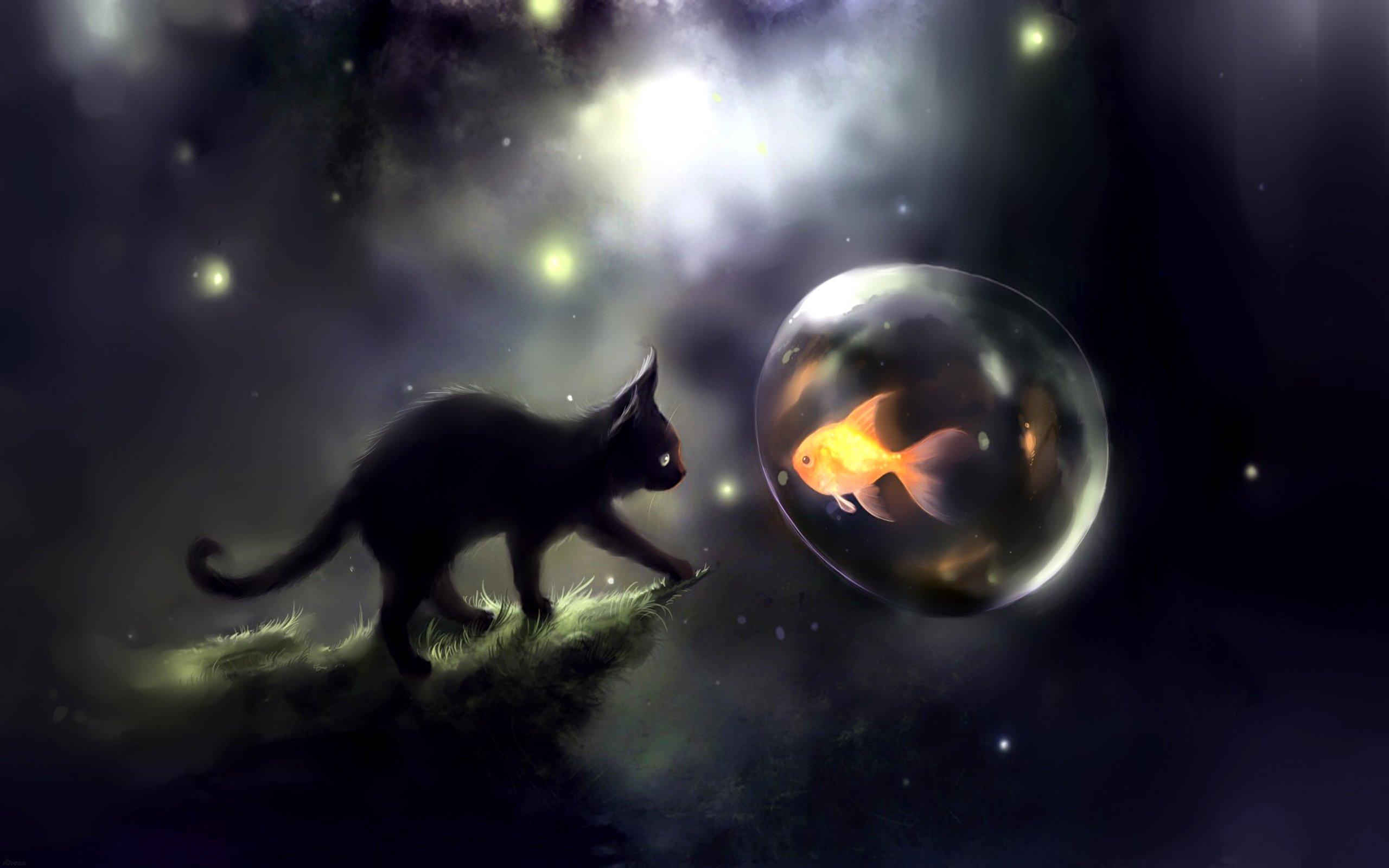 Kitten dreams art cat fish water balloon wallpaper for Dream about fish