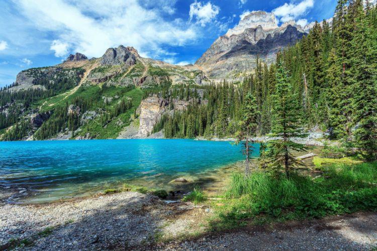 Yoho National Park British Columbia lake mountains trees wallpaper