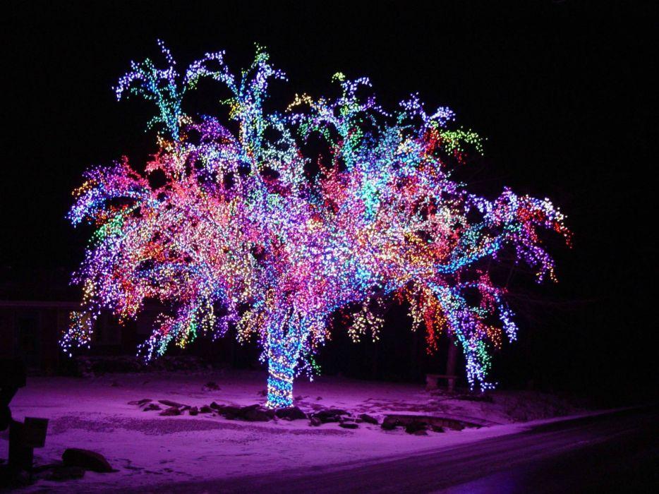 Holiday Christmas Night Tree Color Rainbow Light Winter
