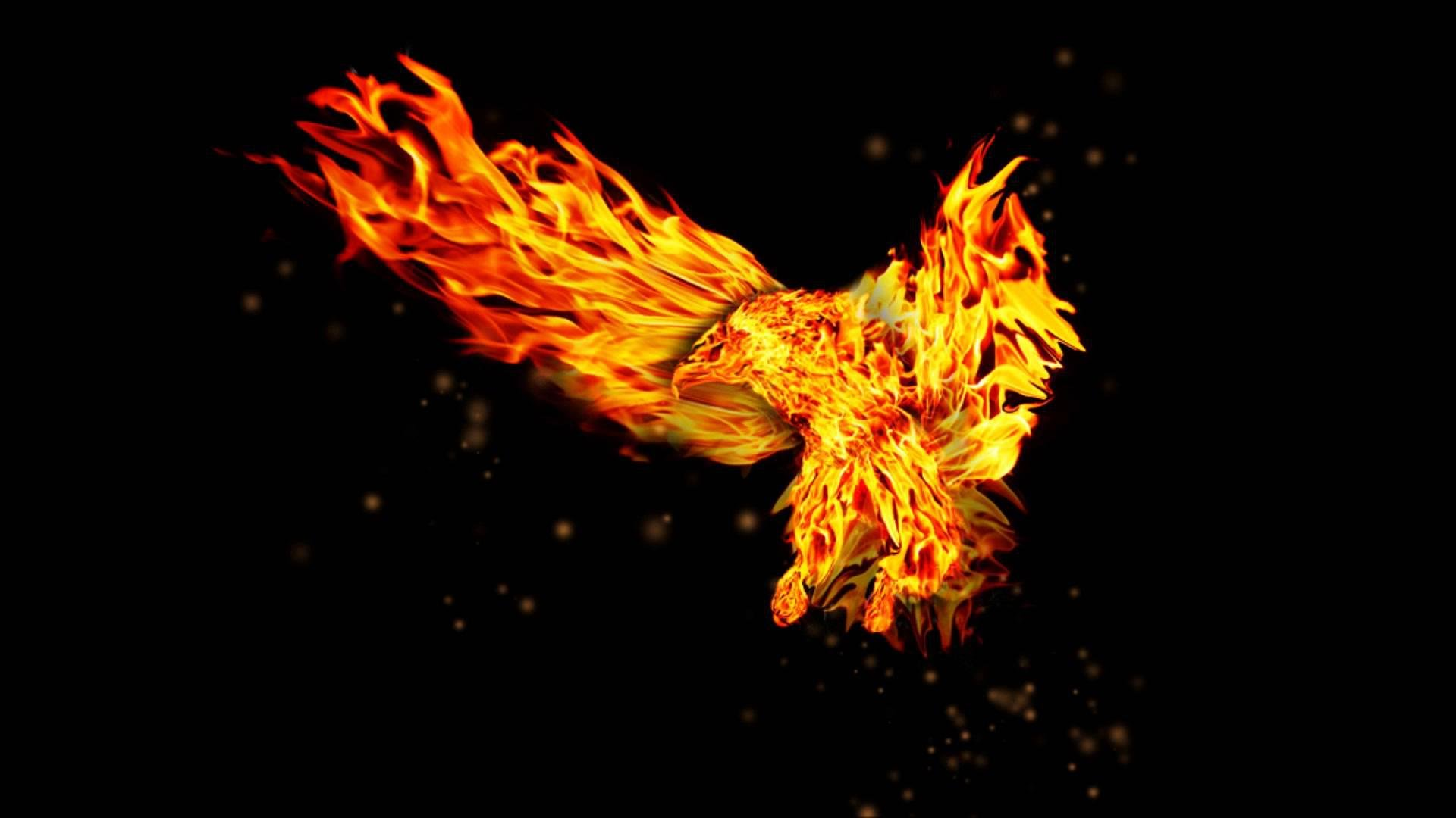 Burning Horse Wallpaper Download