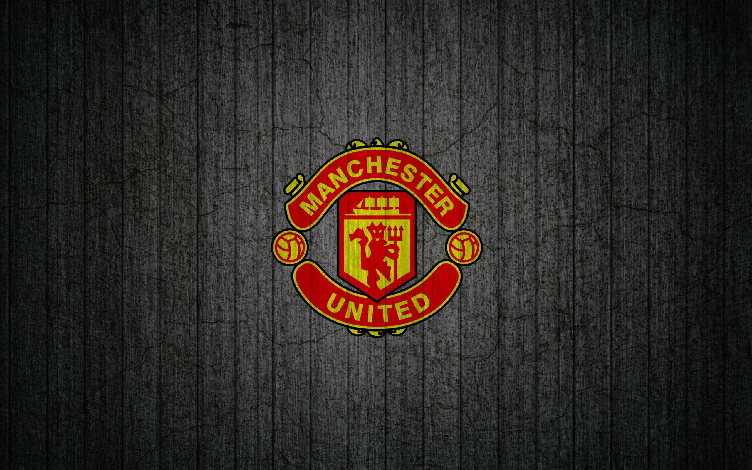 Манчестер юнайтед в катинках