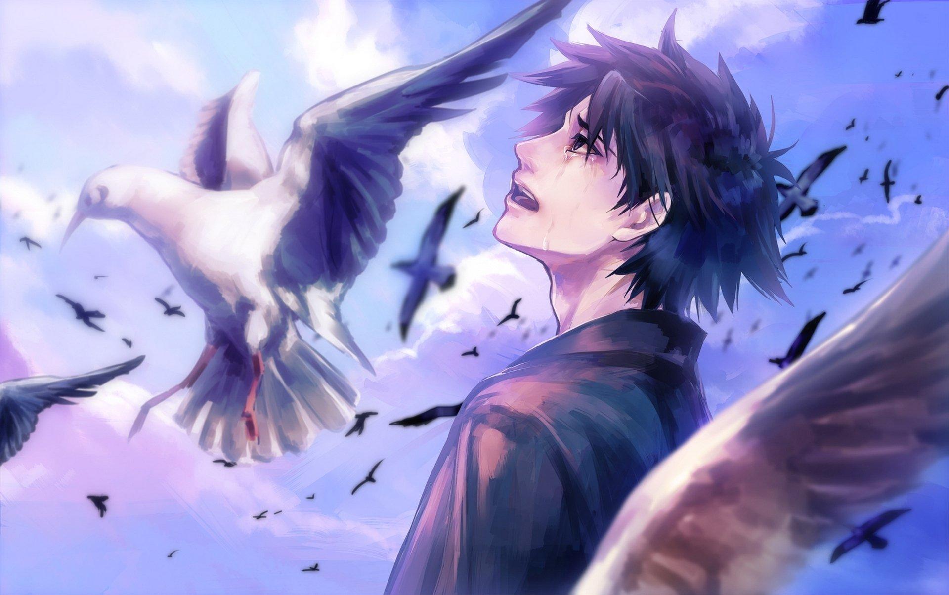 Anime Boy Cry Bird Clouds Sky Wallpaper