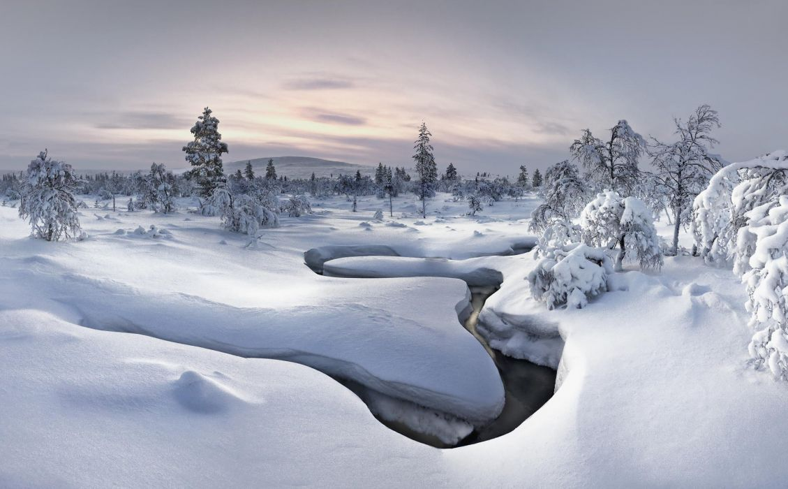 winter snow forest nature river wallpaper