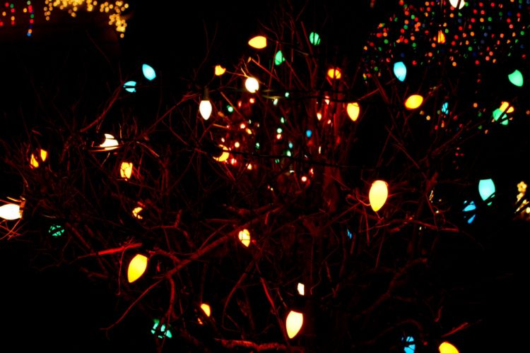 Christmas Lights Holiday Christmas Tree wallpaper