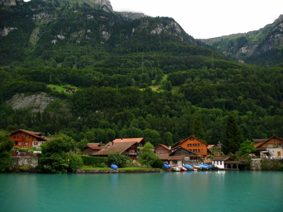 Somewhere in Switzerland mountain lake houses forest trees wallpaper
