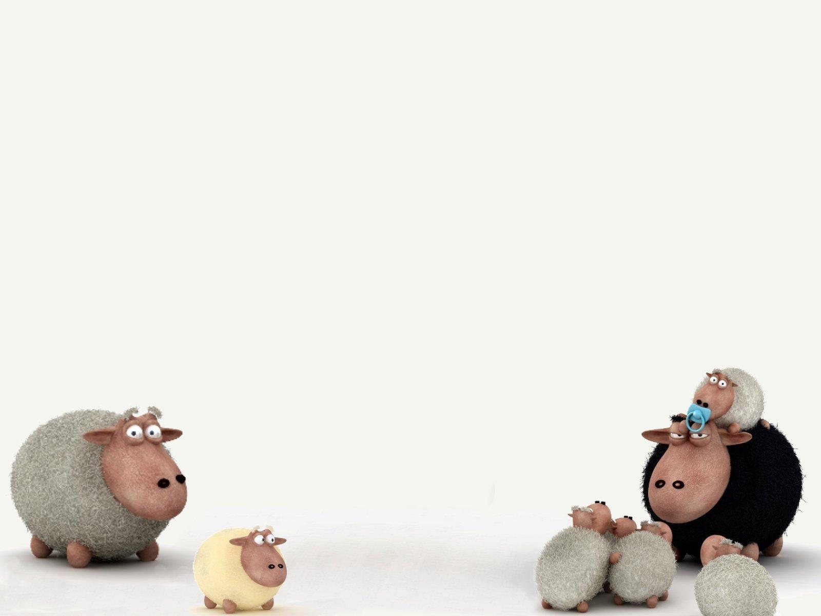 OwdLarrd Funny Sheep Cartoon Wallpaper
