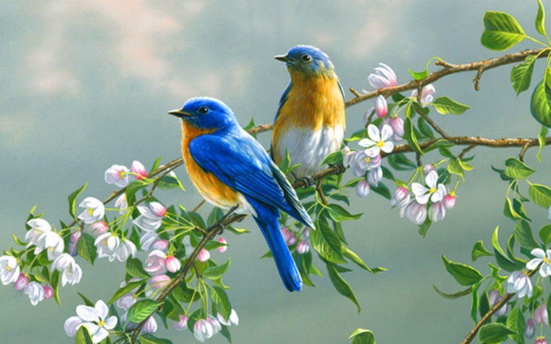 paintings flowers birds animals wallpaper