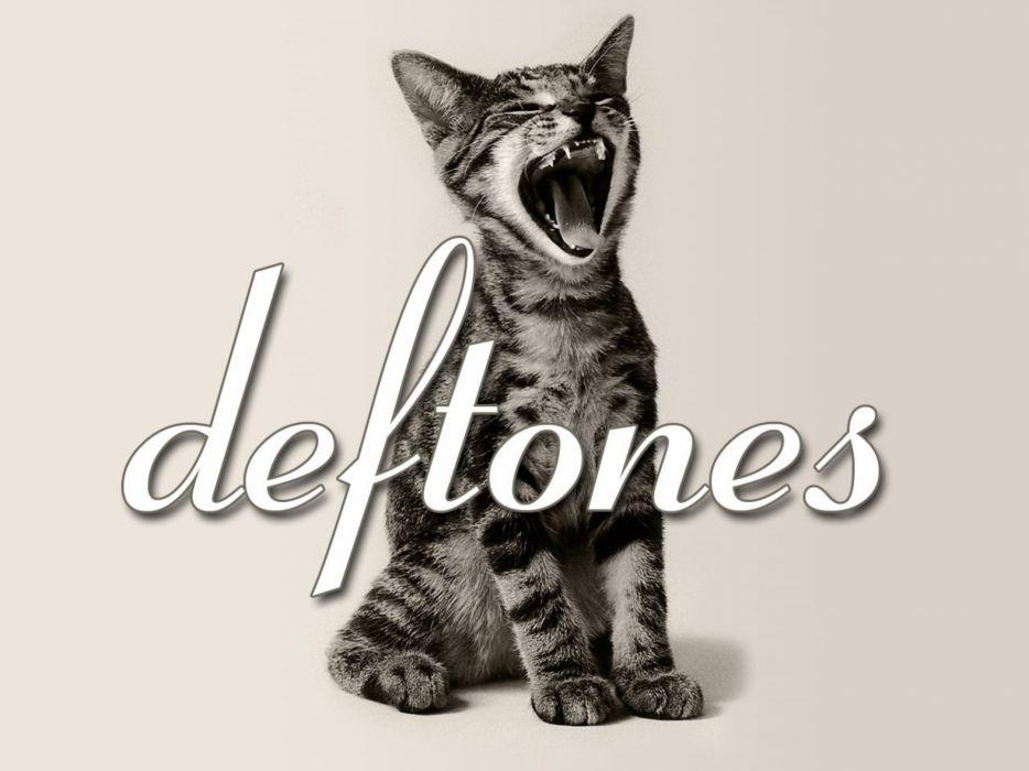 DEFTONES alternative metal experimental rock nu-metal heavy hard cat kitten wallpaper