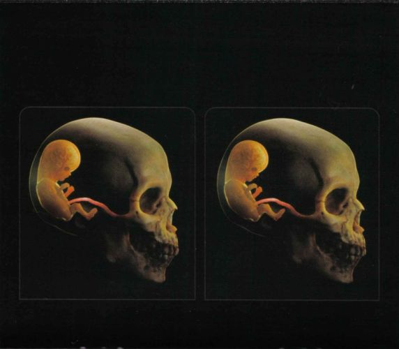 TOOL alternative metal rock nu-metal psychedelic dark skull wallpaper
