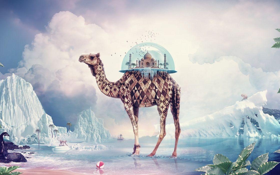 Taj Mahal Camel fantasy wallpaper