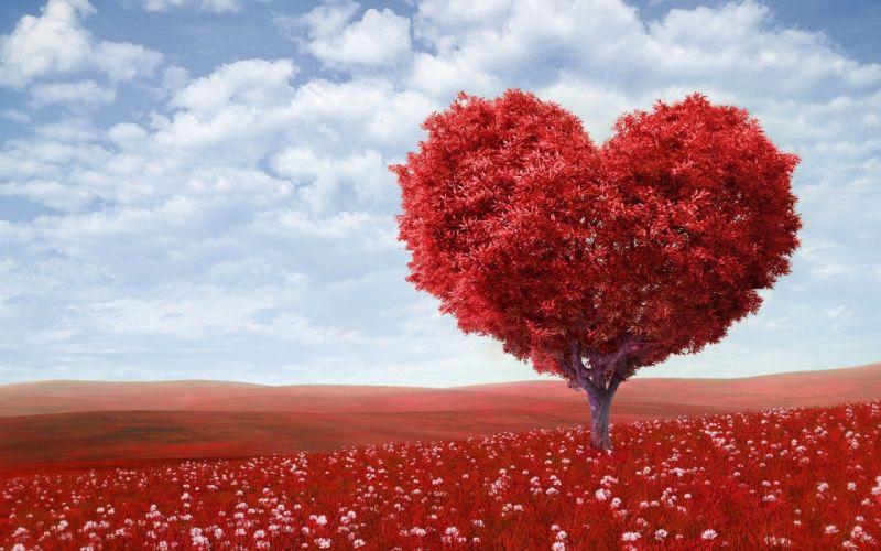 TREE-SHAPED HEART - art red field wallpaper