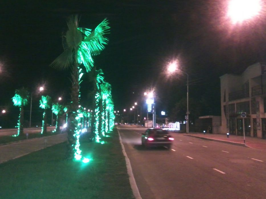 Kutaisi agamshnbeli street palm wallpaper