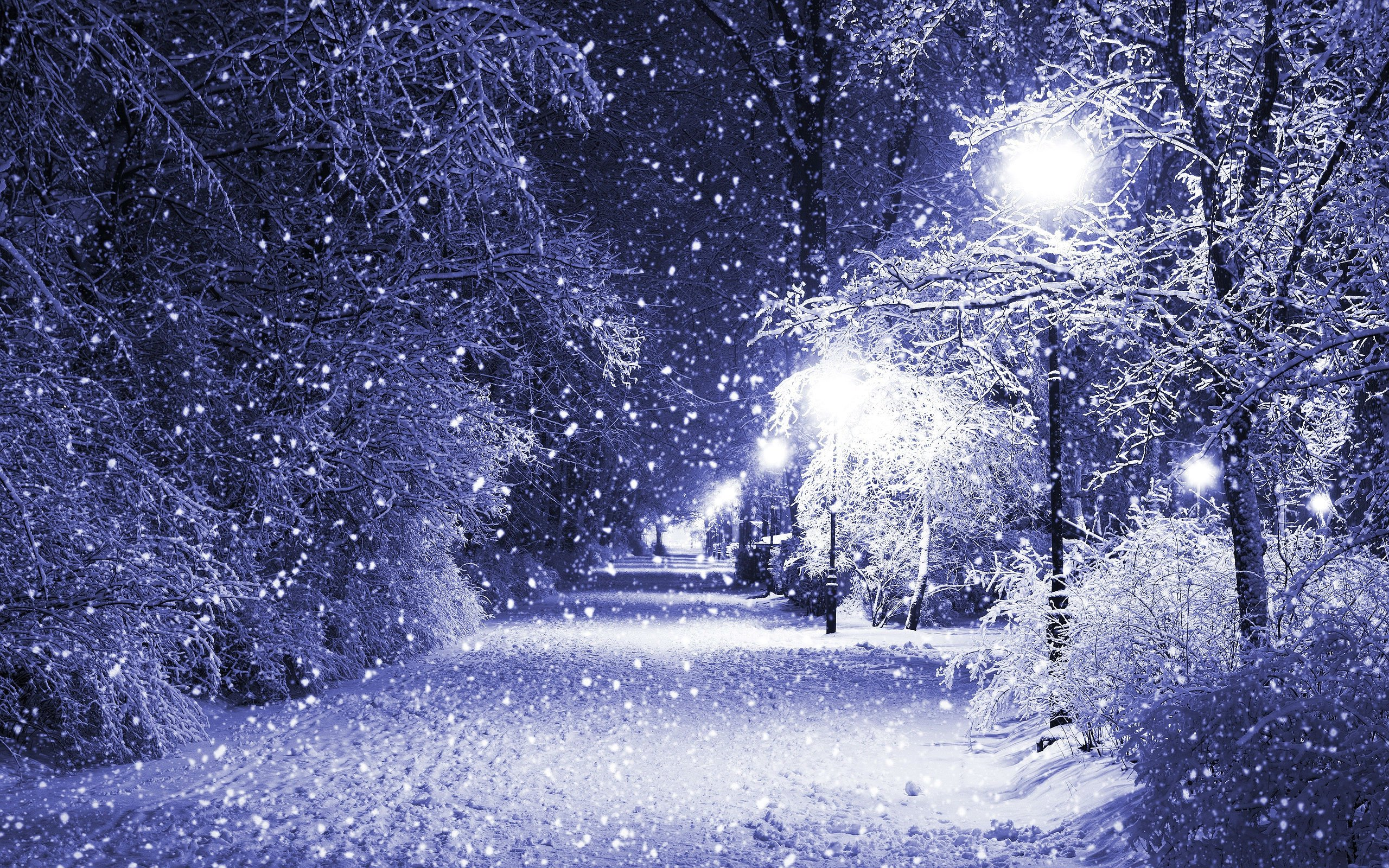 Winter Snow Lamp Post Wallpaper 2560x1600 555336