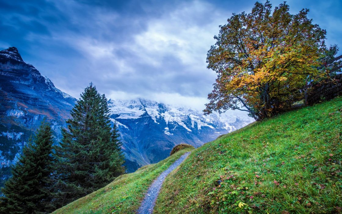 mountains trees footpath landscape wallpaper