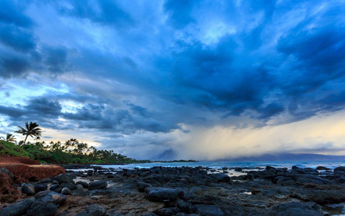 Kahului Hawaii Maui Pacific ocean coast palm trees clouds wallpaper