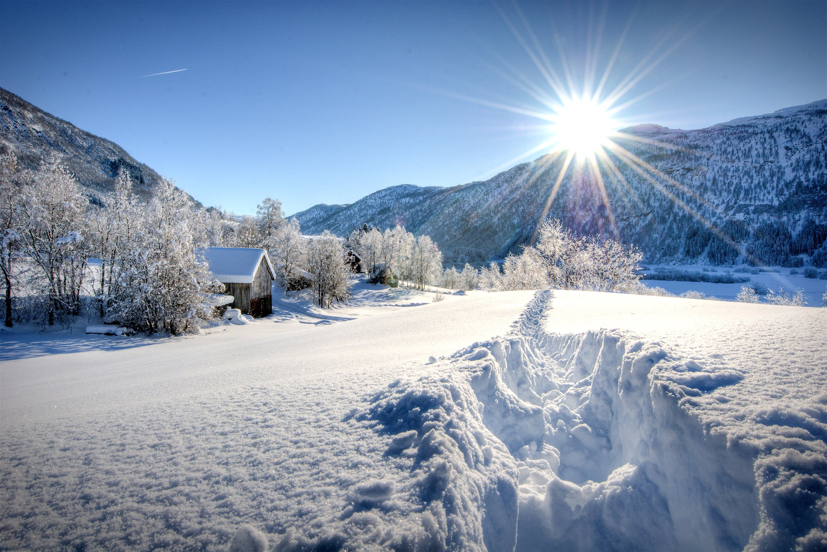 Seasons Winter Mountains Snow Trees Rays of light Sun ...