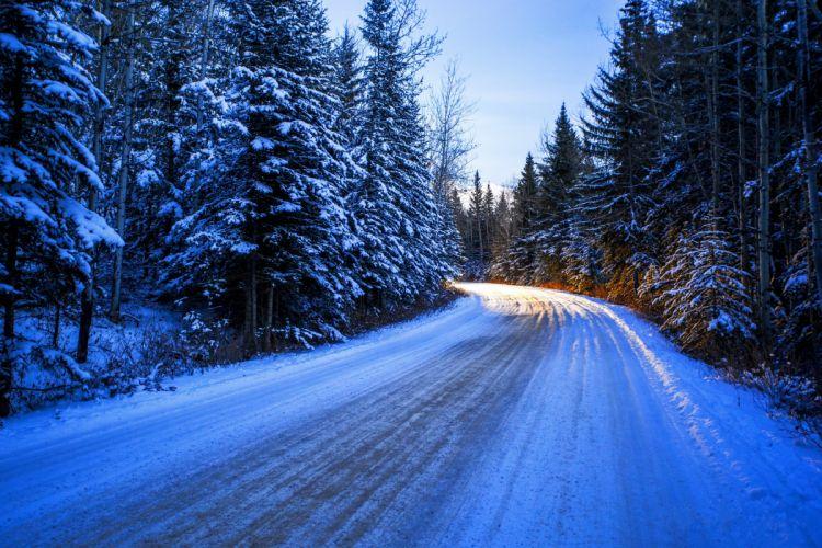 Seasons Winter Roads Fir Snow Nature wallpaper