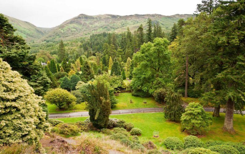 Scotland Garden Younger (Benmore) Botanic Argyll Trees Shrubs Nature park wallpaper