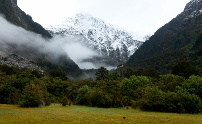 New Zealand Park Mountains Fiordland Grass Nature fog mist clouds snow meadow forest wallpaper