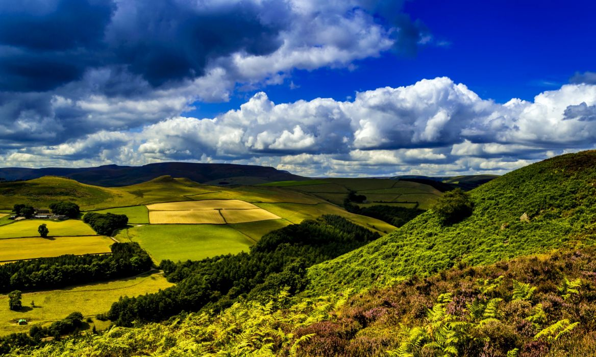 United Kingdom Scenery Field Ladybower Clouds Nature landscape ferns wallpaper