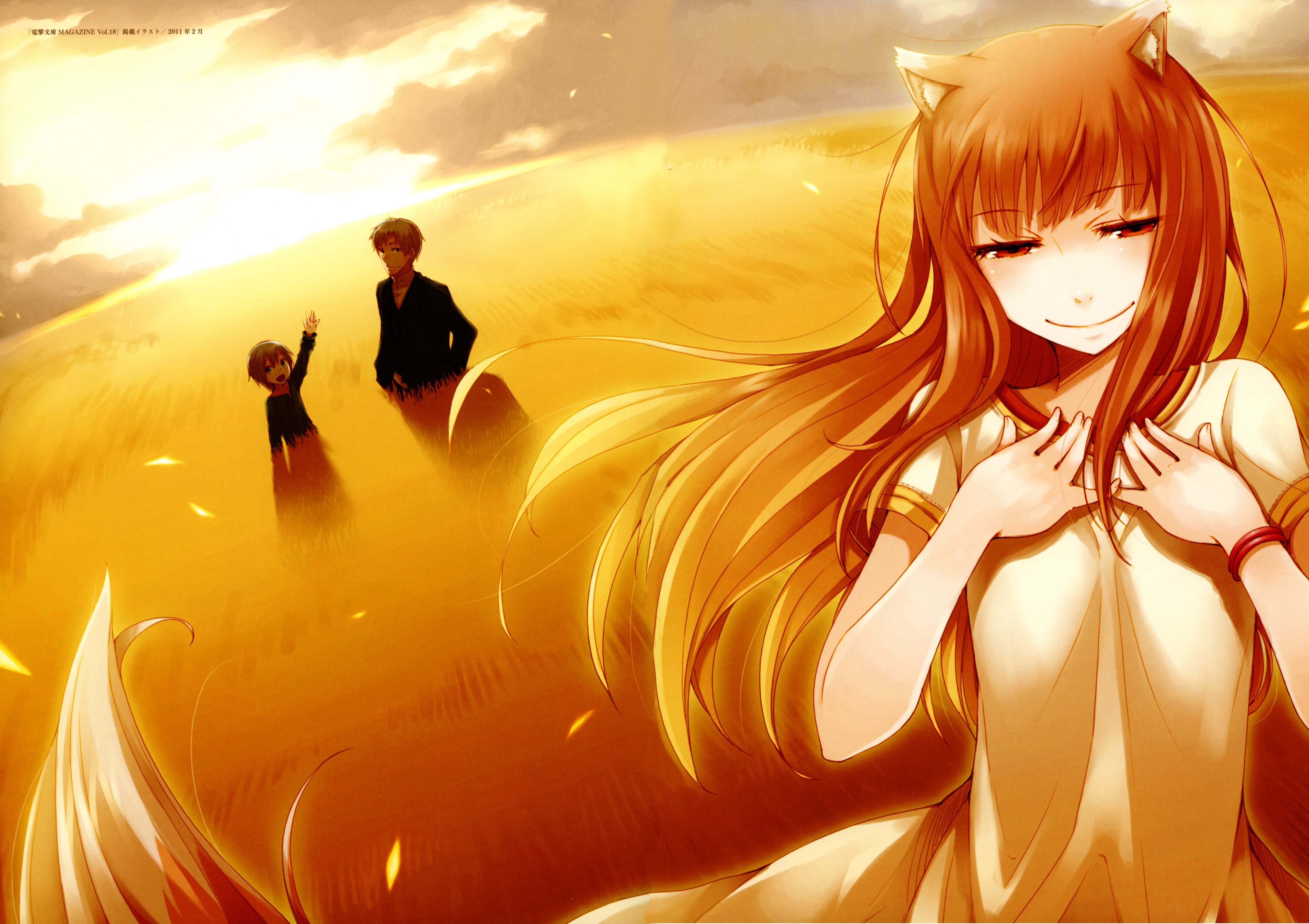 Wallpaper Spice and wolf Horo Girl Move Smile Feathers HD