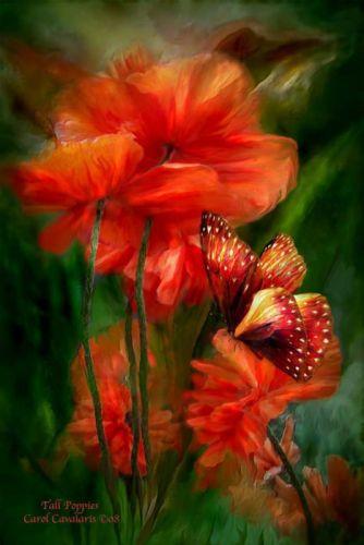 art flower red painting wallpaper