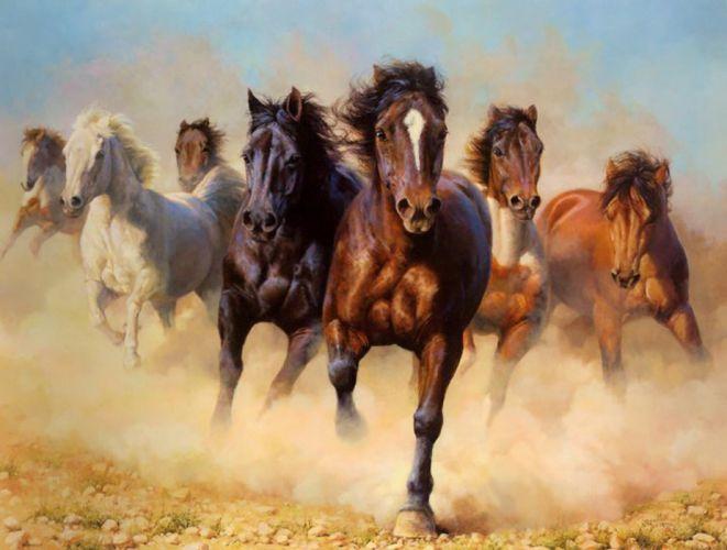 art horses group animal wallpaper