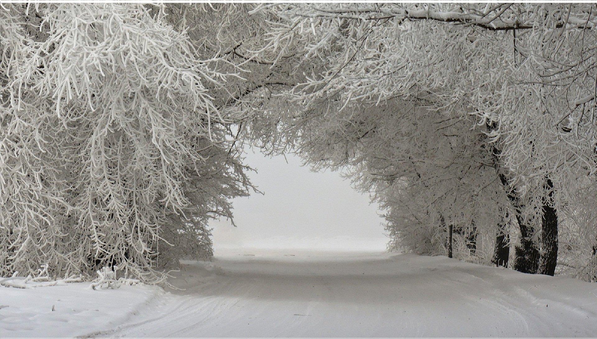 Winter Nature Snow Beautiful Lovely Landscape Landscapes