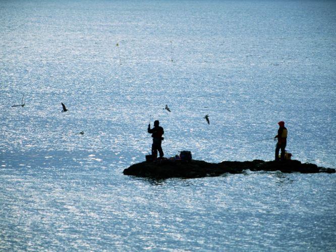 fishing sea bird people wallpaper