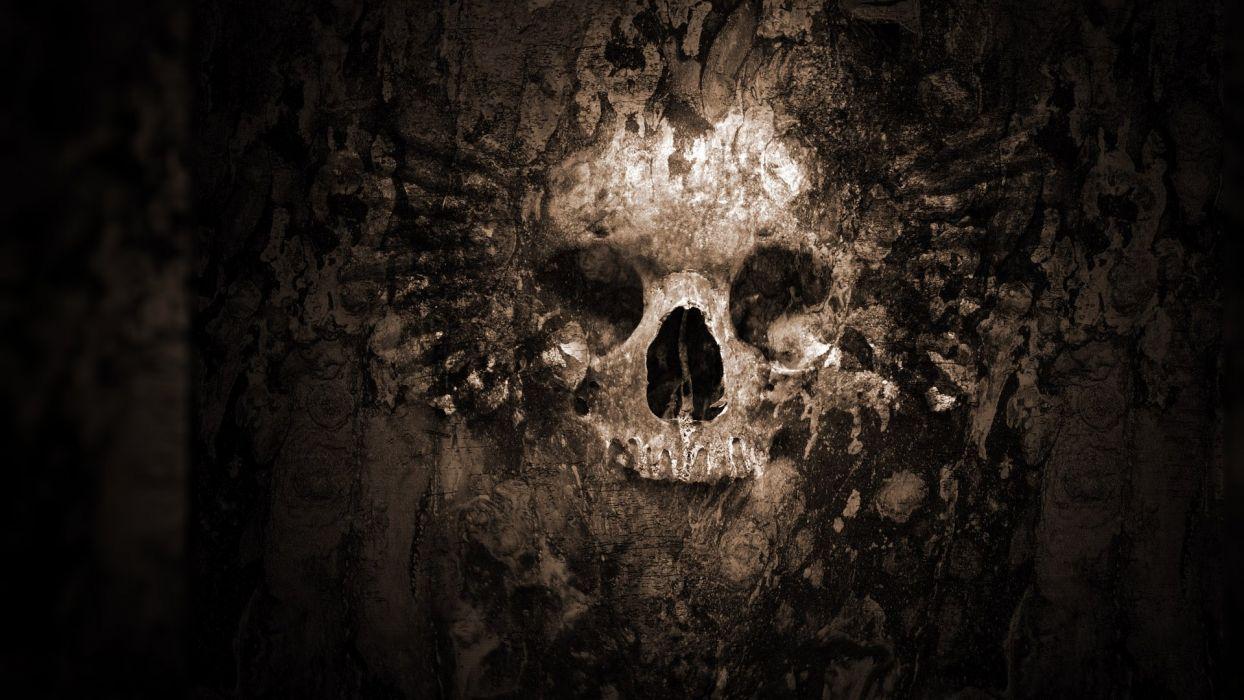 Skull wallpaper wallpaper