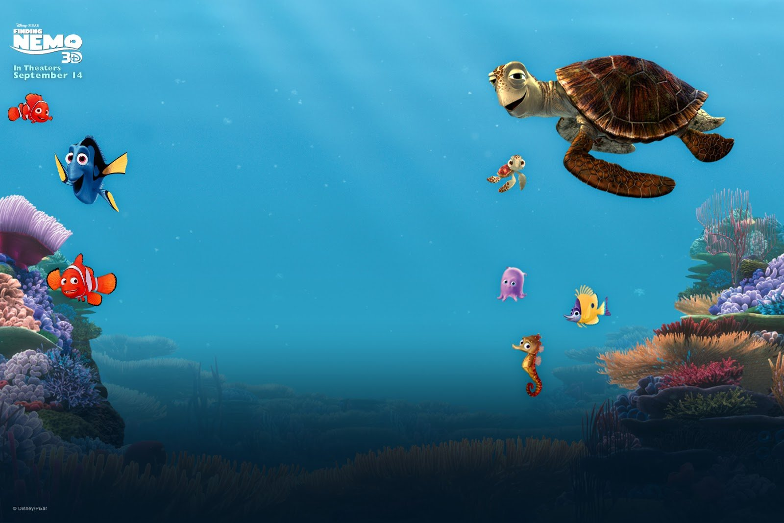 Finding Nemo Animation Underwater Sea Ocean Tropical Fish
