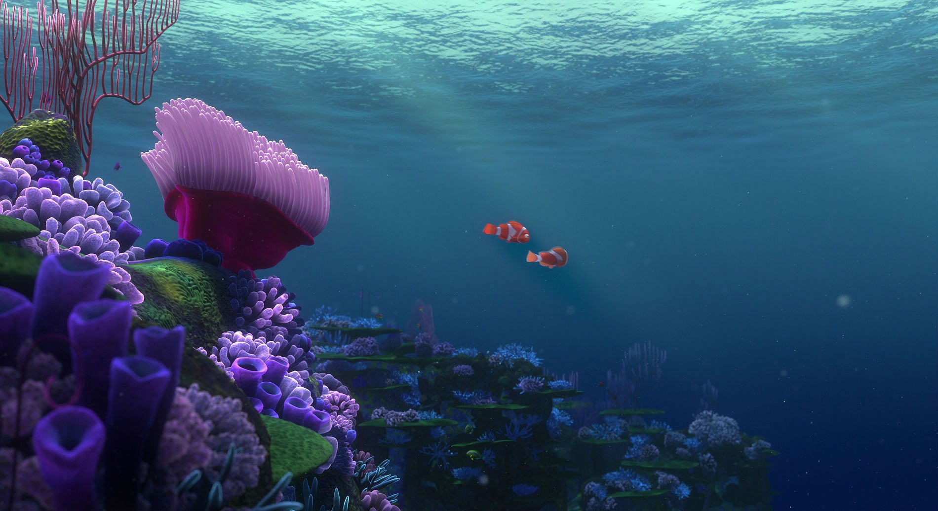 FINDING NEMO Animation Underwater Sea Ocean Tropical Fish Adventure Family Comedy Drama Disney 1finding Nemo Wallpaper