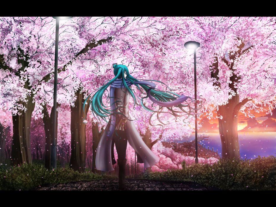 anime girl tree sunshine sunset wallpaper