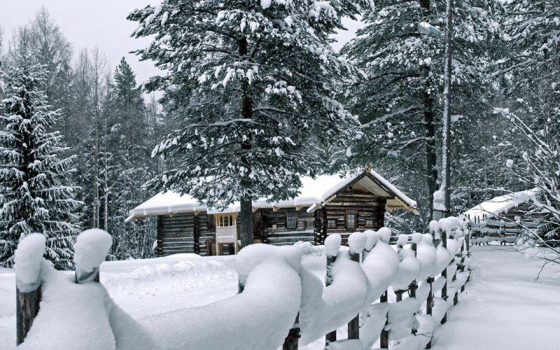 winter nature wallpaper