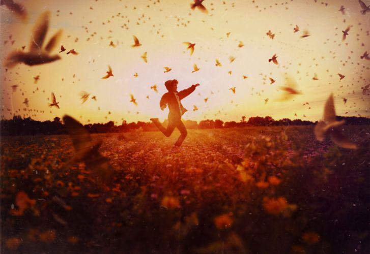 guy field sun birds running wallpaper