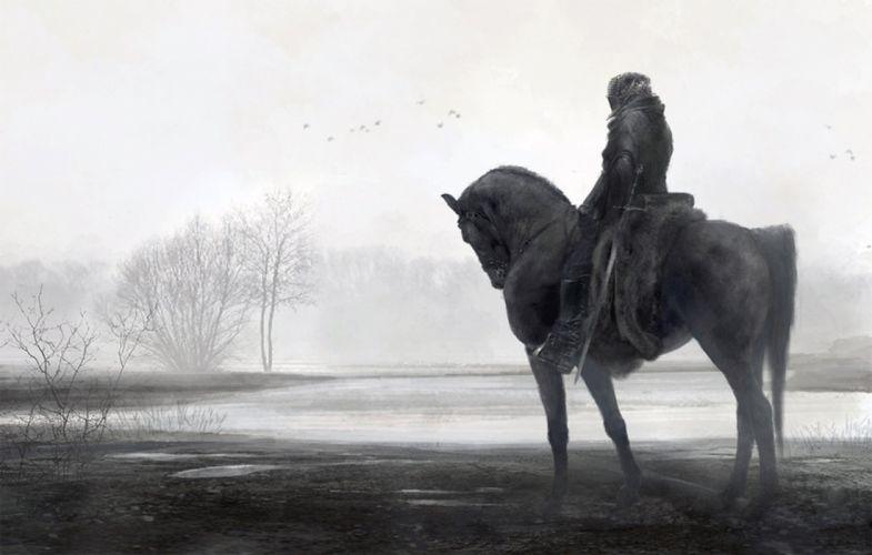 fantasy horse fog male tree wallpaper